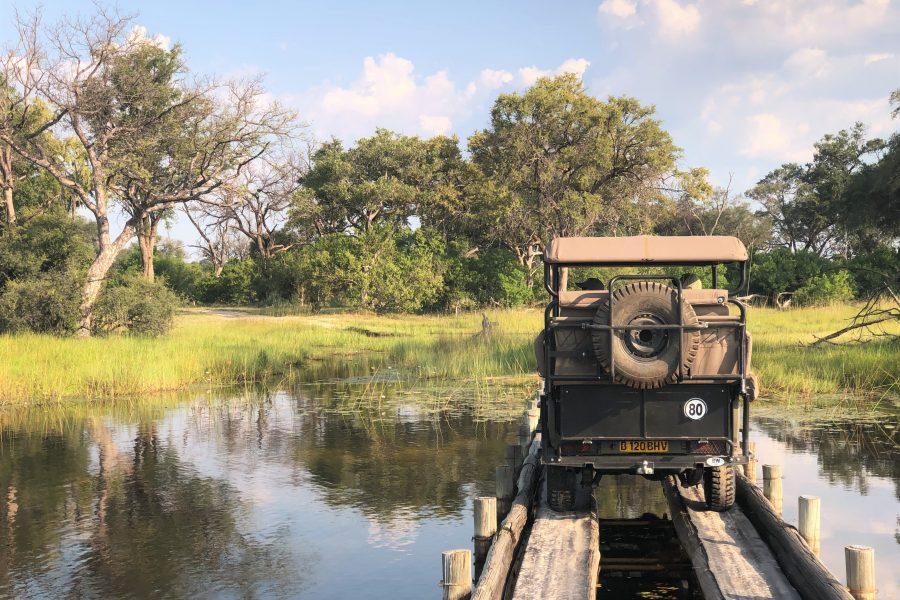 Wooden bridge Okavango Delta, Botswana