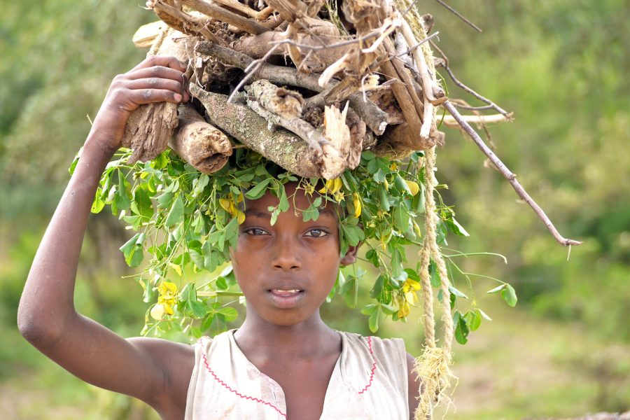 Girl carrying sticks Simean Mountains