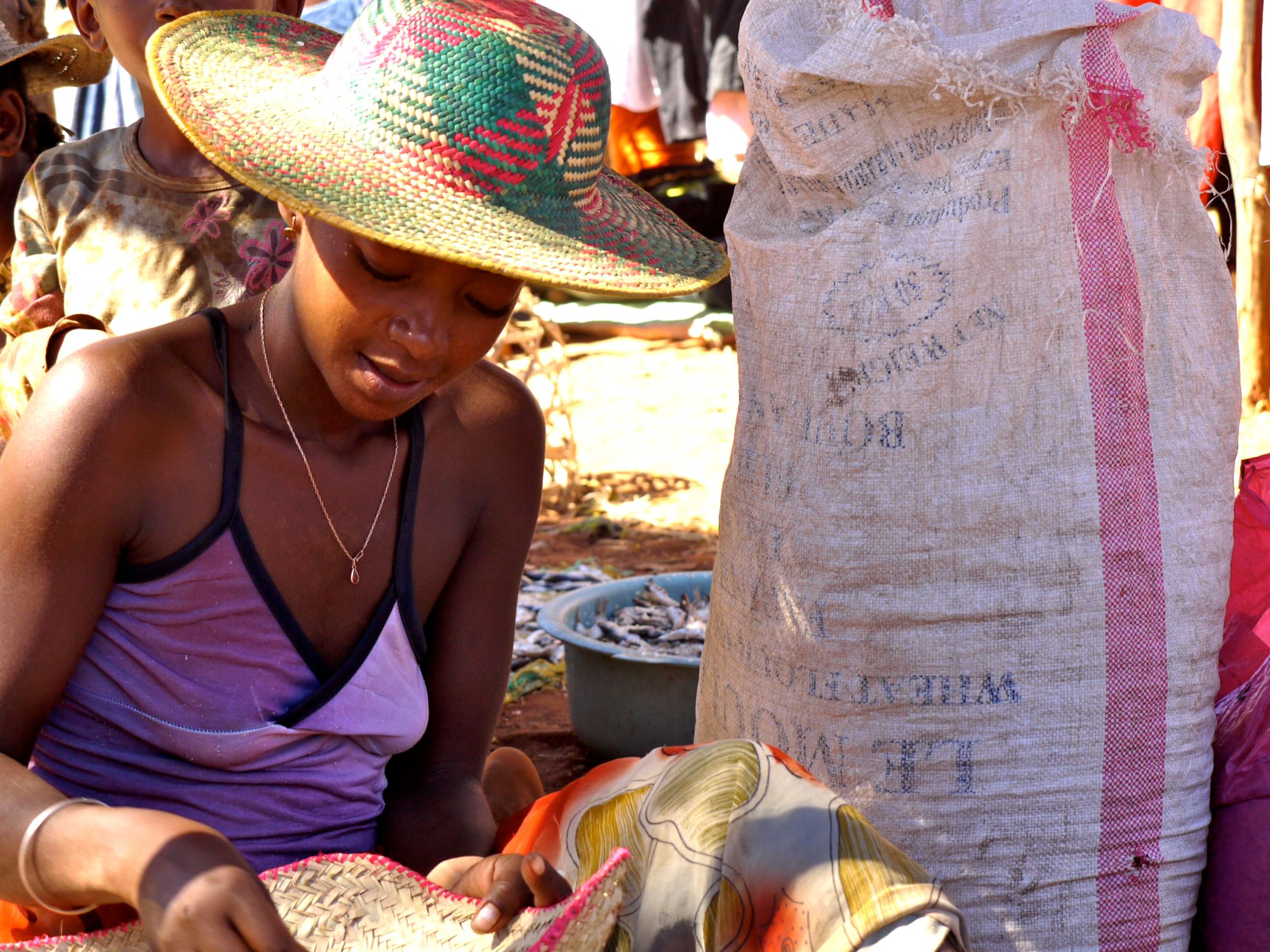 Madagascan Community Crafting for Income: Wild World Safaris