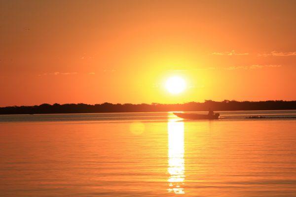 juliana-amorim-ajCvTPpULG0-unsplash_Pantanal